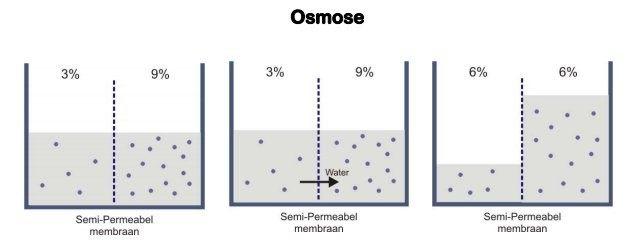 omgekeerde-osmose-reverse-osmosis-waterfilter-water-filter-waterzuivering-zuiver-vitaal-diffusie